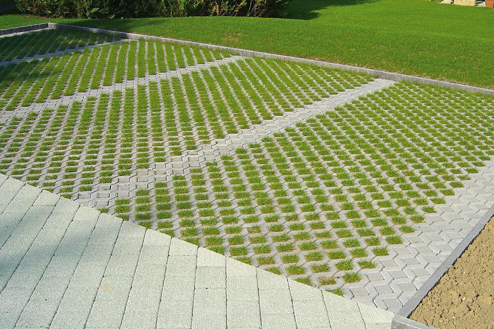 Dalle evergreen beton prix