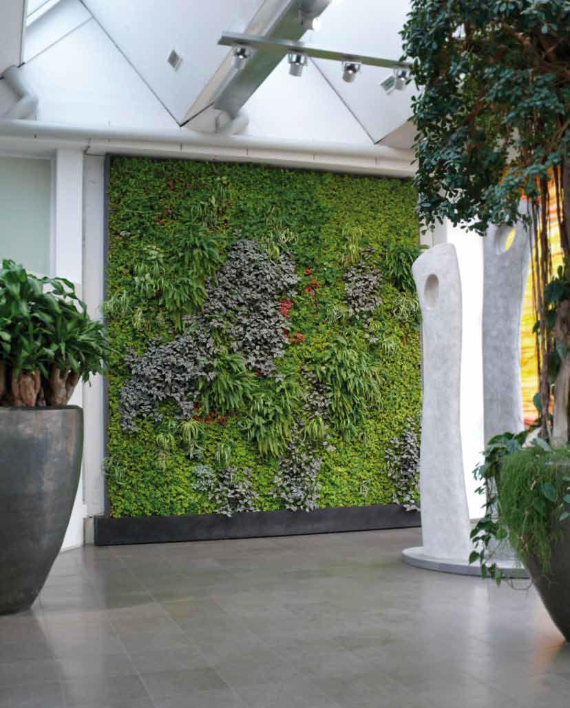 Mur végétal d\'intérieur - Artaqua - Vidéos