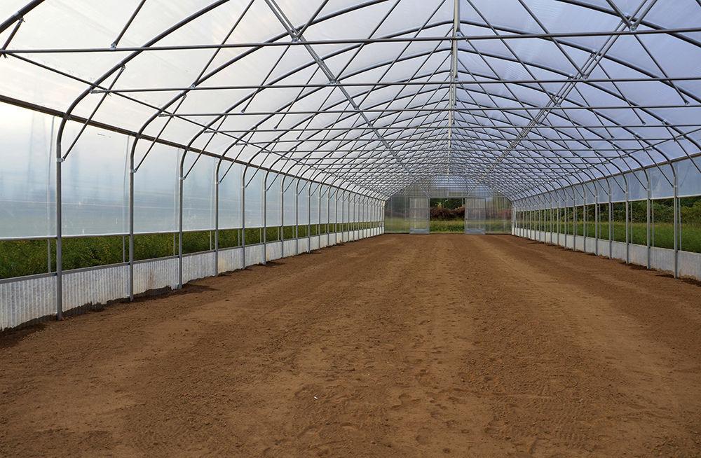 Serre Professionnelle Structure En Acier Tunnelart Pv Europrogress