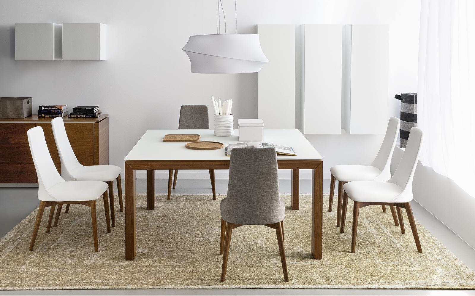 Chaise de salle à manger / contemporaine / en frêne / en hêtre ...