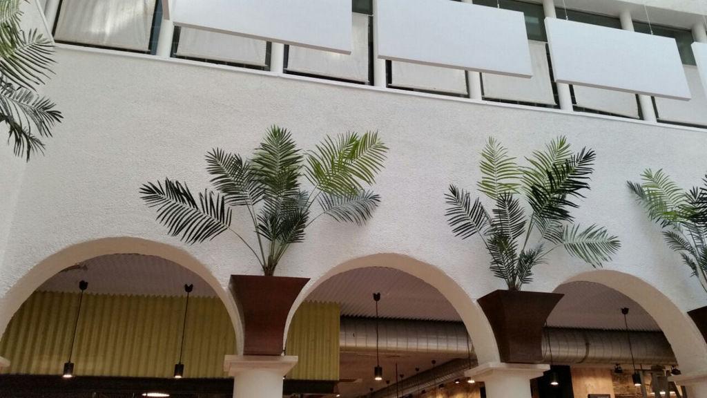 Peinture  La Chaux  De Finition  Pour Plafond  Pour Mur