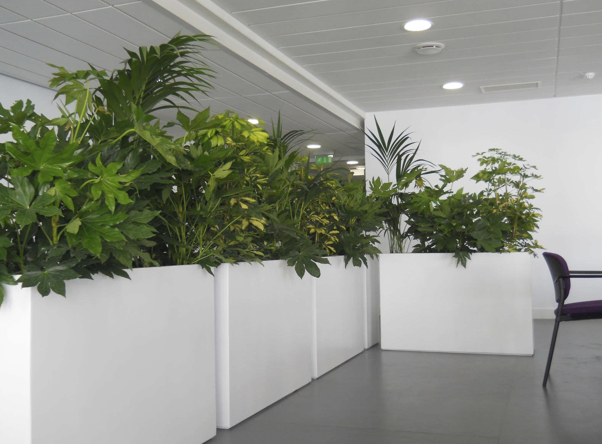 Jardinière en composite / rectangulaire / contemporaine / pour ...