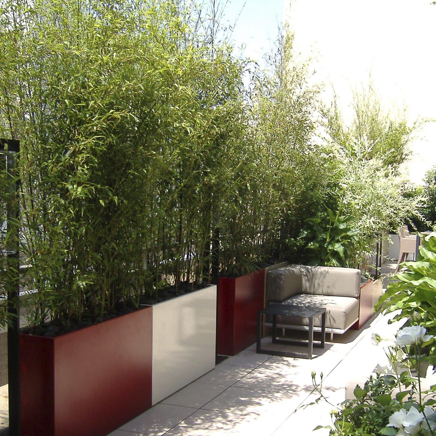 Assez Jardinière en fibro-ciment / rectangulaire / sur mesure  MG01