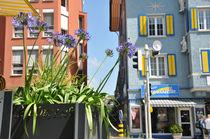 Jardinière en HPL / carrée / contemporaine / pour espace public