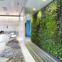 Mur végétal d'intérieur