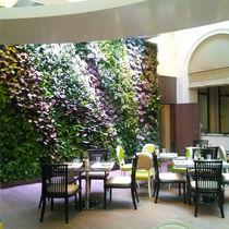 Mur végétal d'intérieur / acoustique