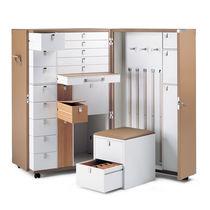 Armoire malle armoire / contemporaine / en chêne / en bouleau