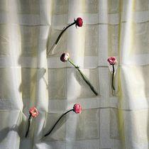 Tissu pour store enrouleur / à carreaux / en coton / en polyester