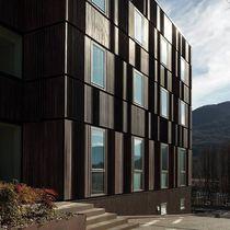 Fenêtre battante / en bois / en acier / à double vitrage