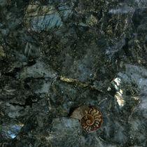 Plan de travail en pierre semi-précieuse / en Solid Surface / en bois fossilisé / de cuisine