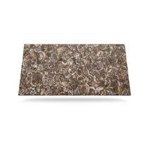 Plan de travail en Solid Surface / en bois fossilisé / de cuisine