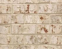 Brique perforée / pour façade / blanche / à relief