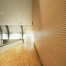 Panneau acoustique pour agencement intérieur / en bois / MDF / pour bureau