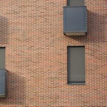 Brique de parement en clinker / pour façade / rouge