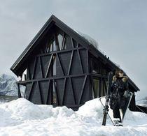 Maison préfabriquée / classique / en bois massif / écologique