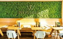 Mur végétal d'intérieur / en végétaux stabilisés / en panneau modulaire