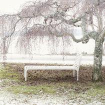 Bain de soleil design scandinave / en bois / pour espace public