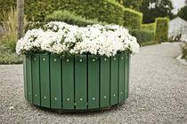 Jardinière en bois / ronde / design / pour espace public