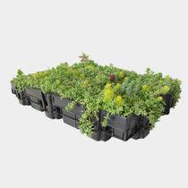Kit pour toiture végétalisée