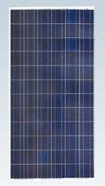 panneau solaire photovoltaïque polycristallin SF156×156-72-P Zhejiang Sunflower Light Energy Science & Technology Limited Liability Company