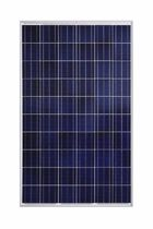 panneau solaire photovolta&iuml;que polycristallin BRP6360064-XXX 225-250 W Brandoni