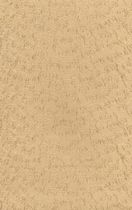 tissu mural : soie SW10 - 1039 Seltex