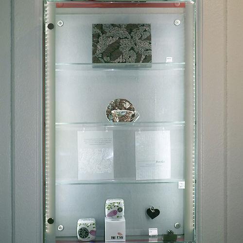 vitrine contemporaine / murale / en verre / en acier inox