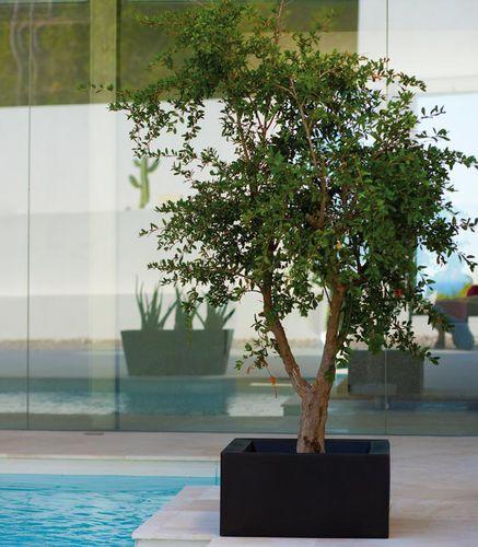 pot de jardin en polyéthylène / carré