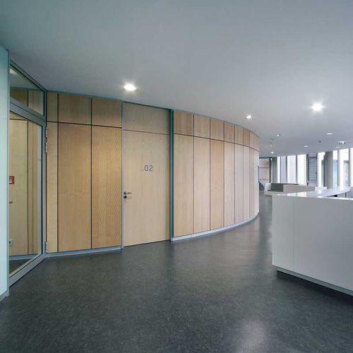 plaque de plâtre à haute résistance / rectangulaire / pour plafond / professionnelle