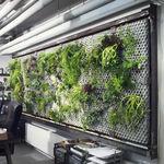 mur végétal d'intérieur / avec structure modulaire