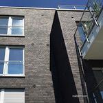 Brique de parement / pleine / pour façade / grise BRISBANE Röben