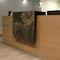 Revêtement mural en pierre naturelle / résidentiel / professionnel / lisse ARDOISE - MOSCOU StoneLeaf