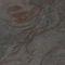Revêtement mural en pierre naturelle / résidentiel / professionnel / lisse ARDOISE - BUDAPEST StoneLeaf