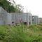 Bâtiment modulaire / préfabriqué / pour logement collectif / en béton NORD IBS Distribution