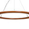 luminaire suspendu / à LED / rond / courbé