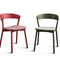 Chaise contemporaine / en hêtre / en bois massif / en frêne EDITH by Massimo Broglio Traba'