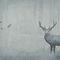 Papiers peints contemporains / en tissu / en vinyle / à motif nature AUTUMN WOODS Skinwall