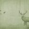 Papiers peints contemporains / en tissu / en vinyle / motif nature AUTUMN WOODS Skinwall