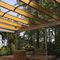 pergola adossée / en bois / en aluminium / couverture en verre
