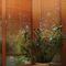 store vénitien / en bambou / de protection solaire