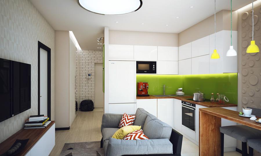 Appartement 1 Chambre Minimaliste Conçu Pour Un Jeune Homme