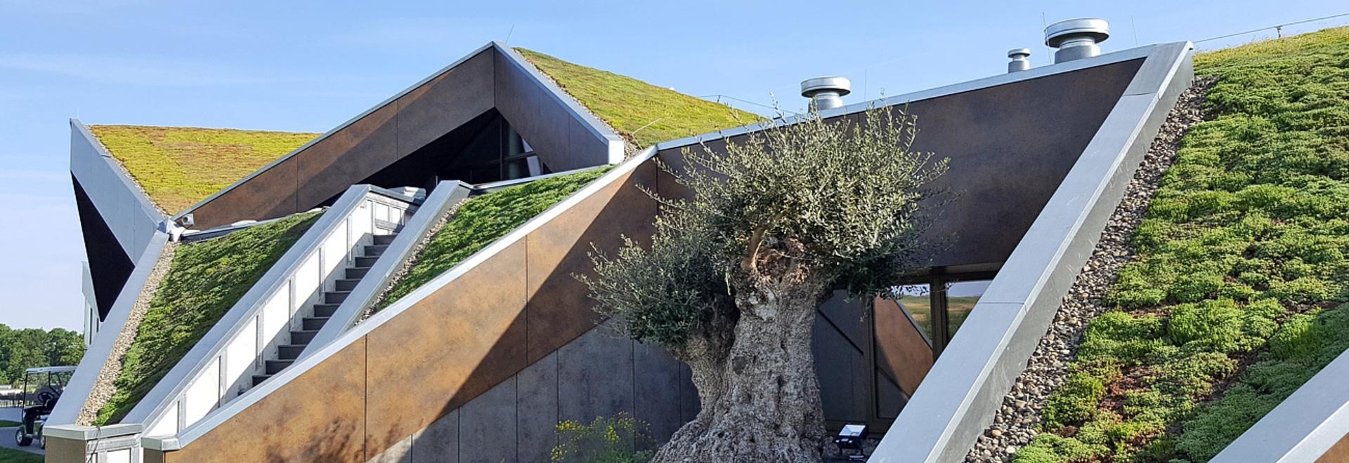La création d'un toit vert sur un toit lancé n'est pas un problème a fourni usages spéciaux du toit sont prises en compte.