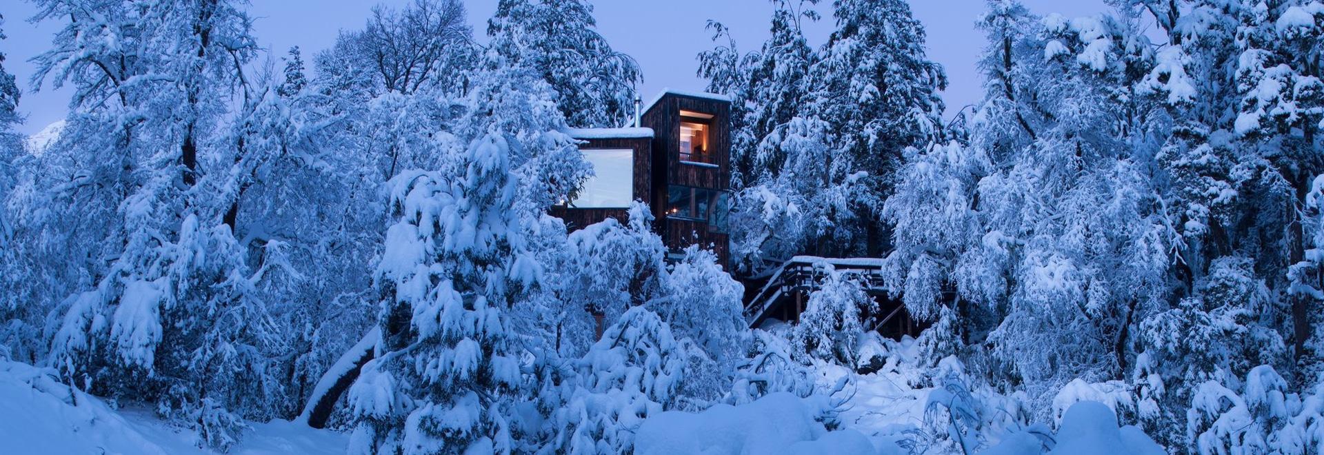Refuge de montagne de datcha de La établi du bois noirci dans le Chilien les Andes