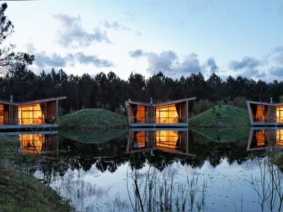 Huttes viables d'eco construites sur des échasses dans une forêt française idyllique de pin