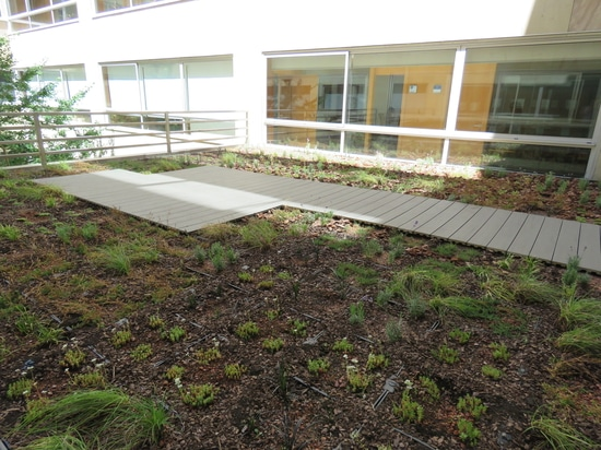 Jardin de toit à l'université d'ESCI-UPF