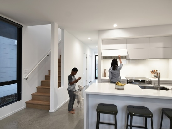 Logement d'Oak Park | Johnsen Schmaling Architects