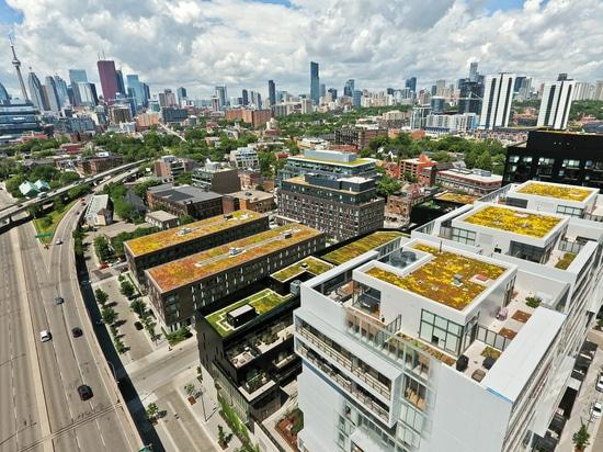 À BAU 2019, ZinCo démontrera comment construire les toits verts innovateurs. Notre exemple montre les logements de ville de rivière, Toronto, Canada.