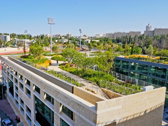 """Jardin sur le dessus de toit du """"le campus national pour l'archéologie de l'Israël «"""