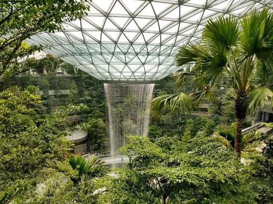 la cascade d'intérieur géante a visionné préalablement en avant de l'ouverture d'avril de l'aéroport de changi de bijou