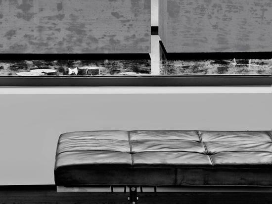 l'alternance des matériaux, des textures et des réflexions offre à la maison un aspect visuel distinctif